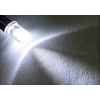 5mm 12V DC White LED Pre-Wired Round Top Bulb